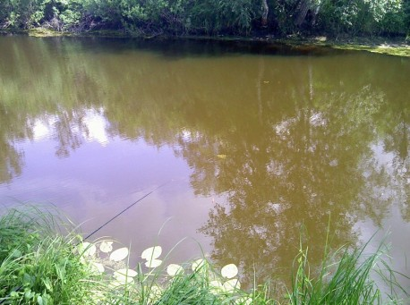 речка Кулунда