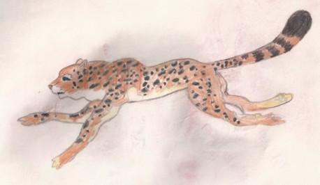 леопард или гепард, я их путаю