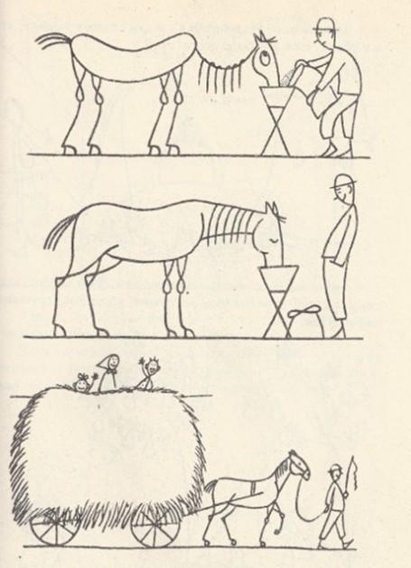 лошади стали упитанными