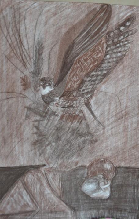 «Натюрморт с чучелом птицы». Сепия.